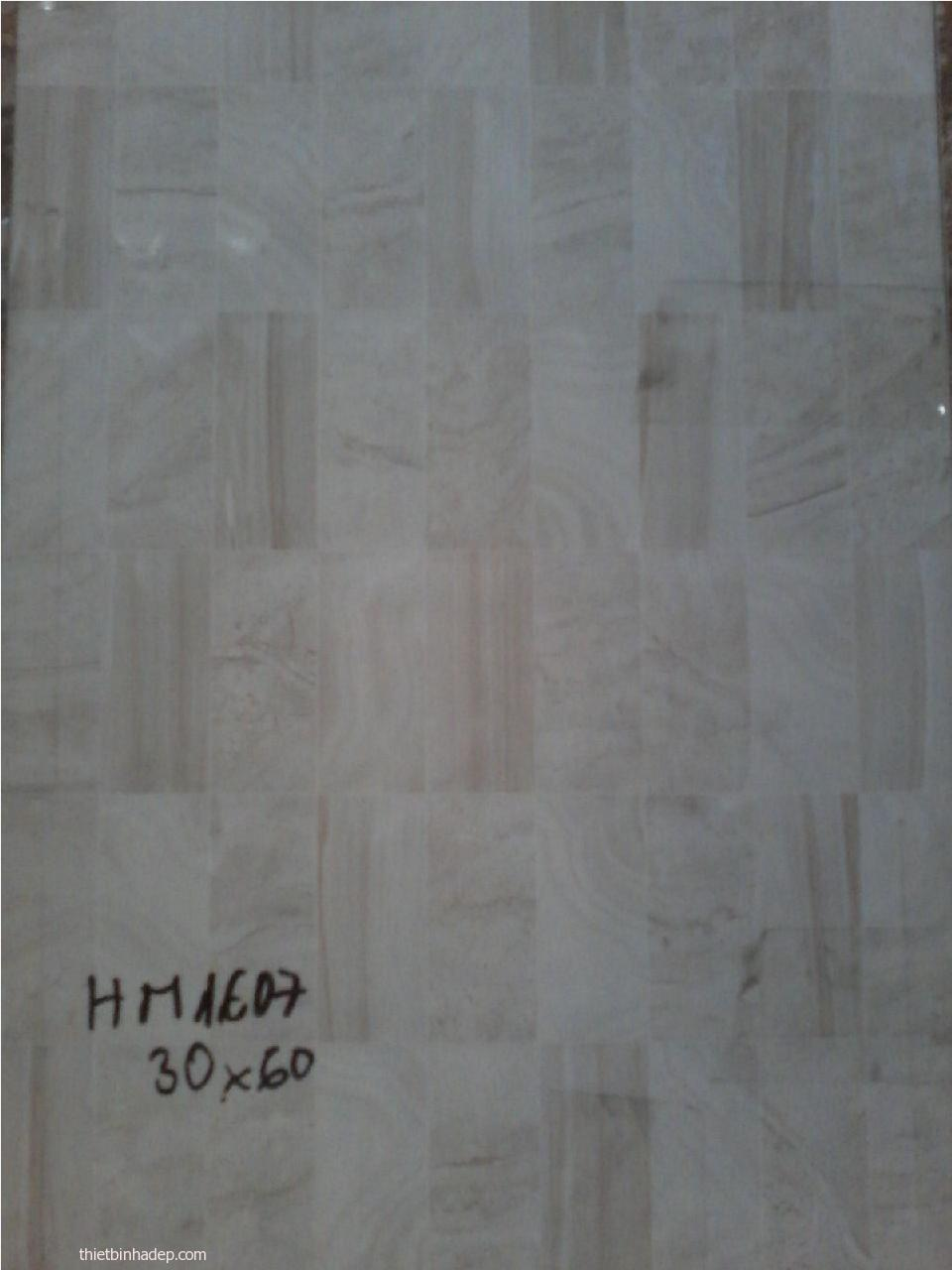 Gạch ốp tường HM160